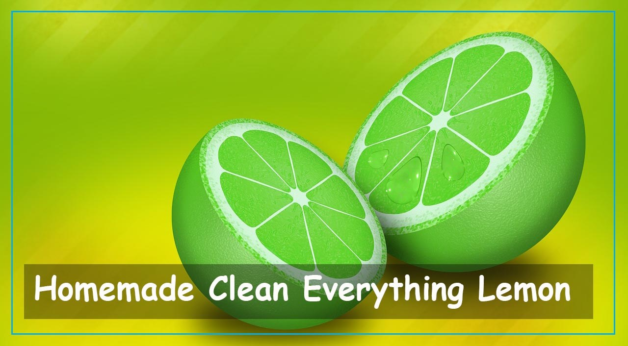 Homemade Clean Everything Lemon